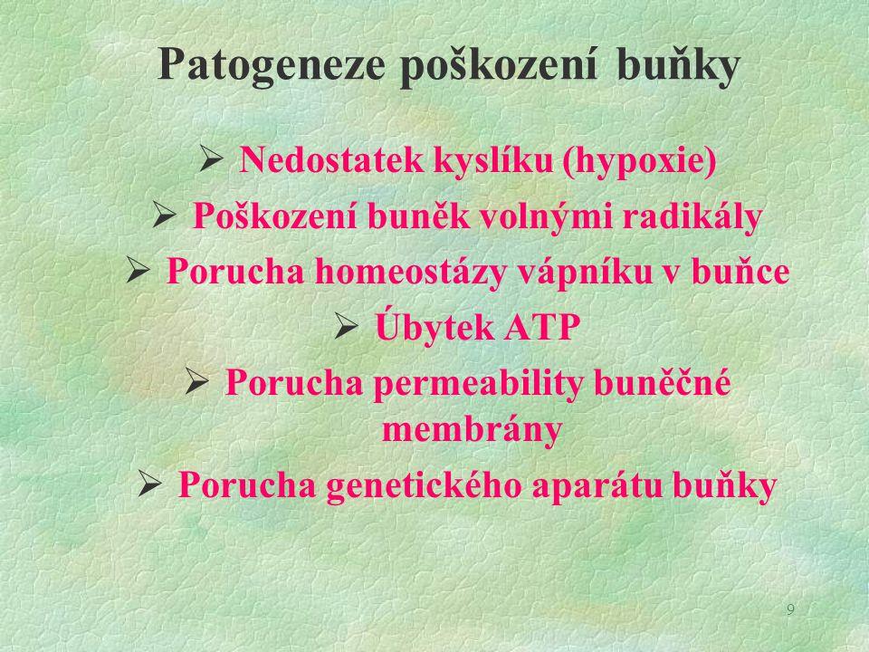 9 Patogeneze poškození buňky  Nedostatek kyslíku (hypoxie)  Poškození buněk volnými radikály  Porucha homeostázy vápníku v buňce  Úbytek ATP  Por