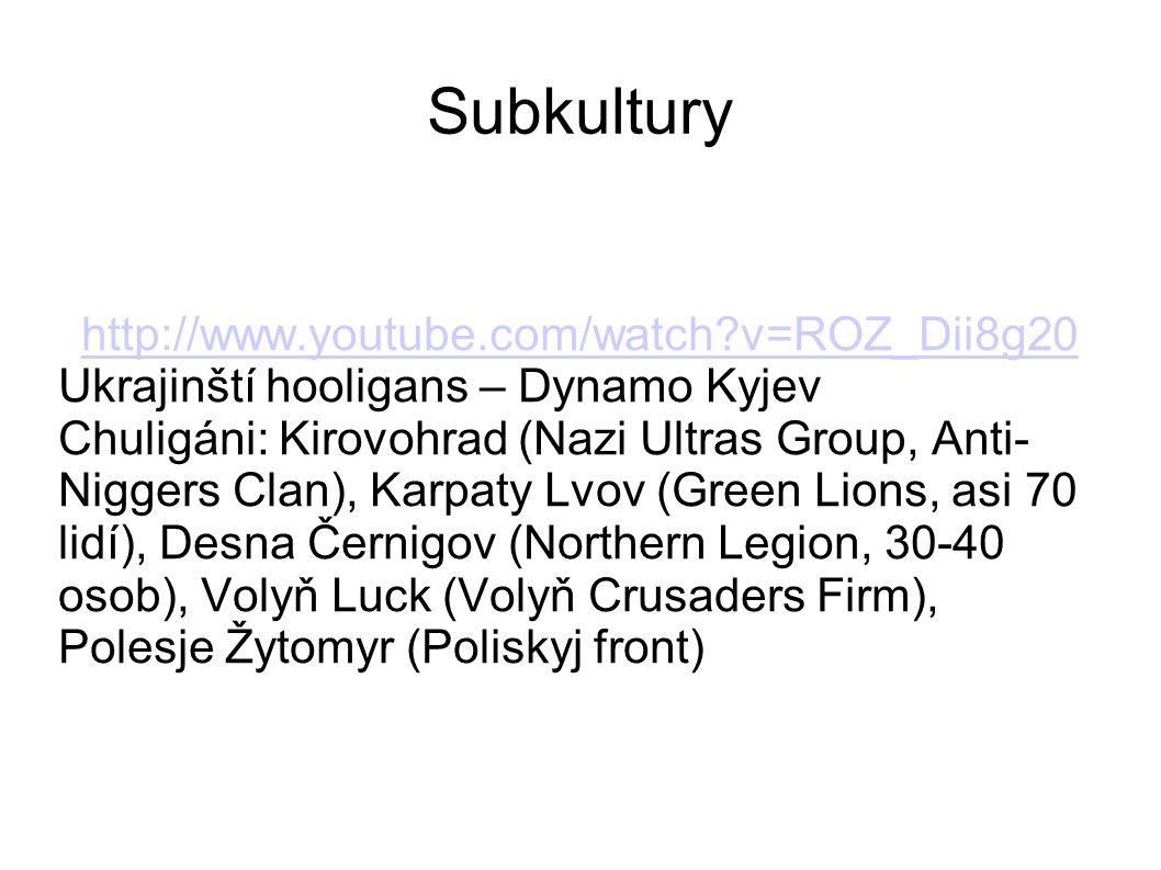 Subkultury http://www.youtube.com/watch?v=ROZ_Dii8g20 Ukrajinští hooligans – Dynamo Kyjev Chuligáni: Kirovohrad (Nazi Ultras Group, Anti- Niggers Clan