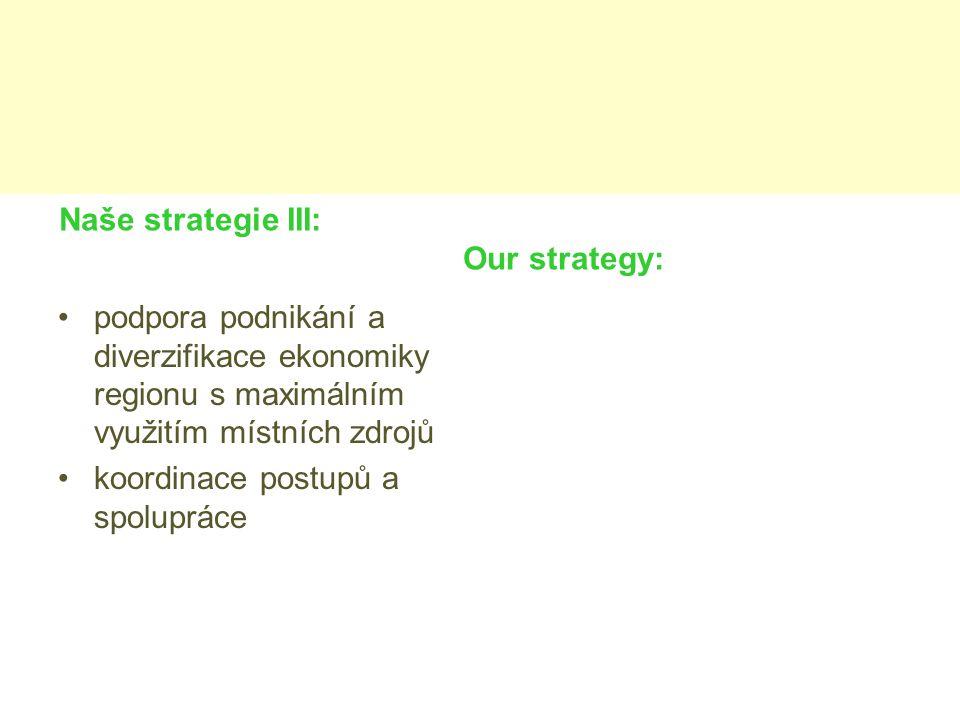 Naše strategie III: Our strategy: podpora podnikání a diverzifikace ekonomiky regionu s maximálním využitím místních zdrojů koordinace postupů a spolupráce