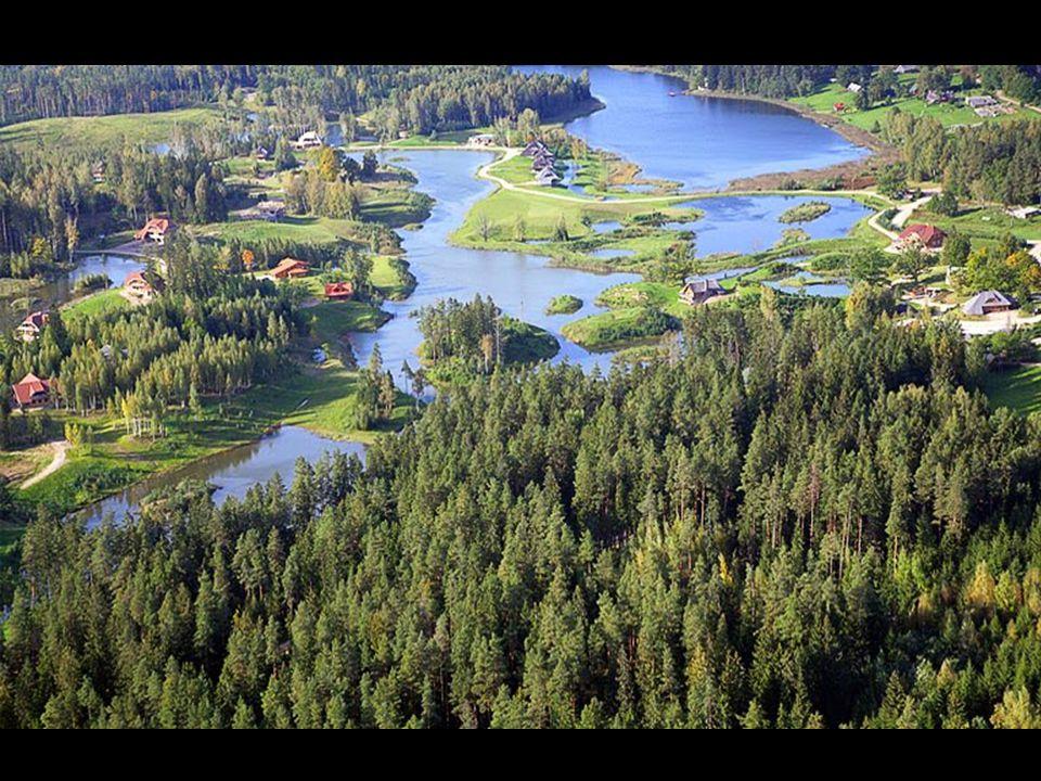 Každý majitel pozemku má svůj vlastní les a část přírodní nádrže.