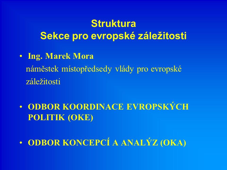 Struktura Sekce pro evropské záležitosti Ing.