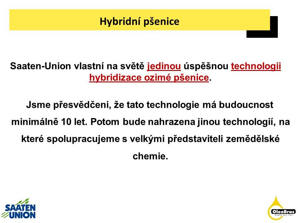 Hybridní pšenice Saaten-Union vlastní na světě jedinou úspěšnou technologii hybridizace ozimé pšenice. Jsme přesvědčeni, že tato technologie má budouc