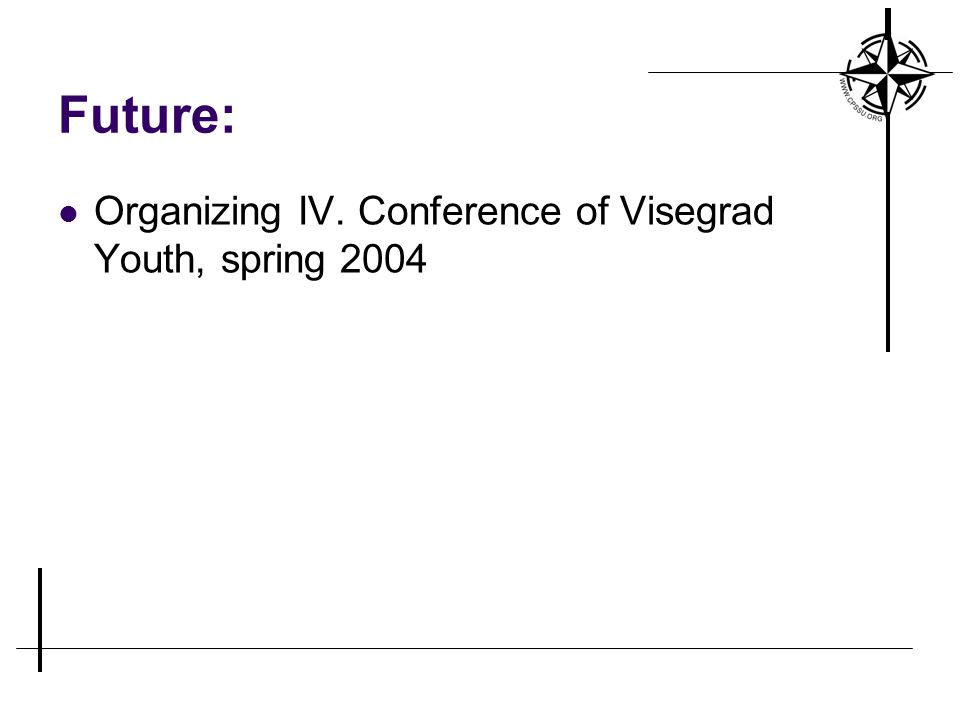 Future: Organizing IV. Conference of Visegrad Youth, spring 2004