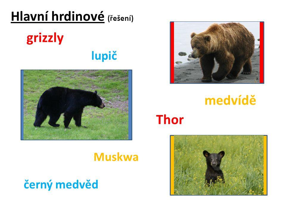Hlavní hrdinové (řešení) grizzly Thor Muskwa medvídě černý medvěd lupič
