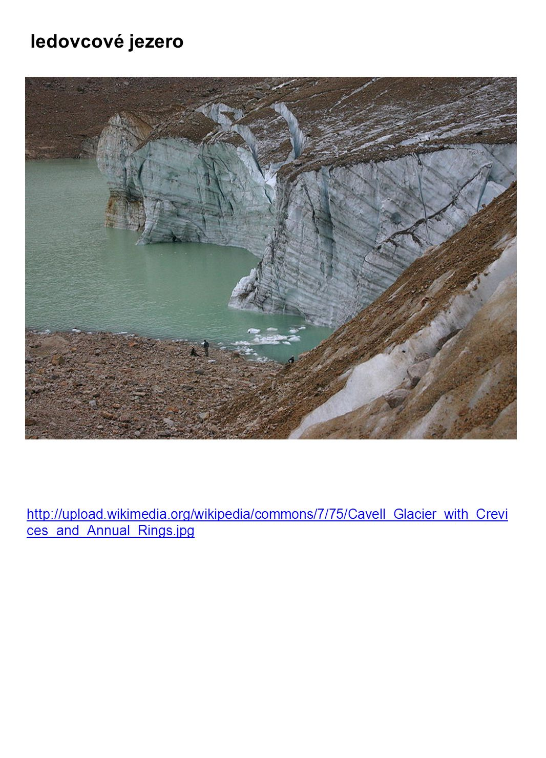 ledovcové jezero http://upload.wikimedia.org/wikipedia/commons/7/75/Cavell_Glacier_with_Crevi ces_and_Annual_Rings.jpg
