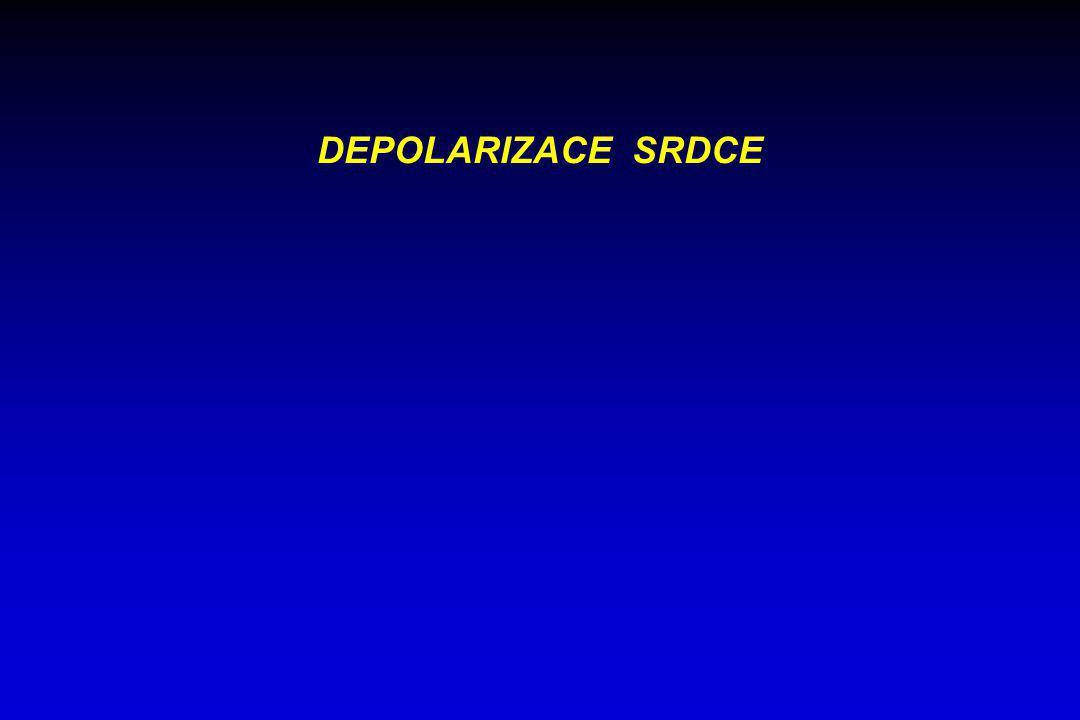 DEPOLARIZACE SRDCE