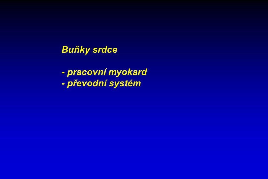 FYZIOLOGICKÉ HODNOTY TK pravá síň0,3 – 0,4 kPa TK levá síňaž 1,1 kPa TK pravé komoryaž 4 kPa TK levé komory20kPa TK a.