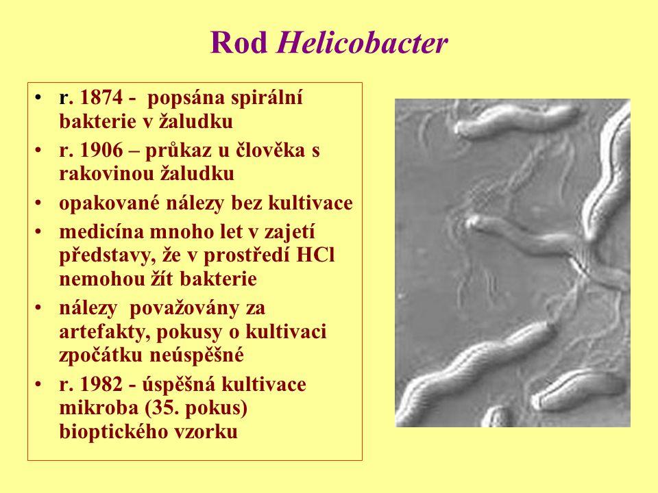 Rod Helicobacter r.1874 - popsána spirální bakterie v žaludku r.