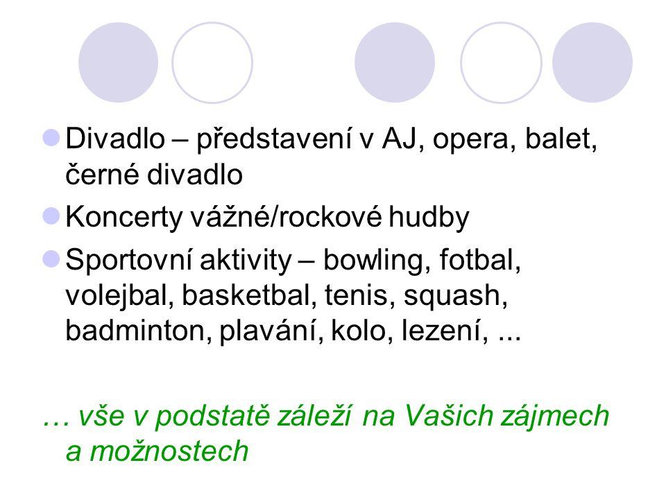 Divadlo – představení v AJ, opera, balet, černé divadlo Koncerty vážné/rockové hudby Sportovní aktivity – bowling, fotbal, volejbal, basketbal, tenis, squash, badminton, plavání, kolo, lezení,...
