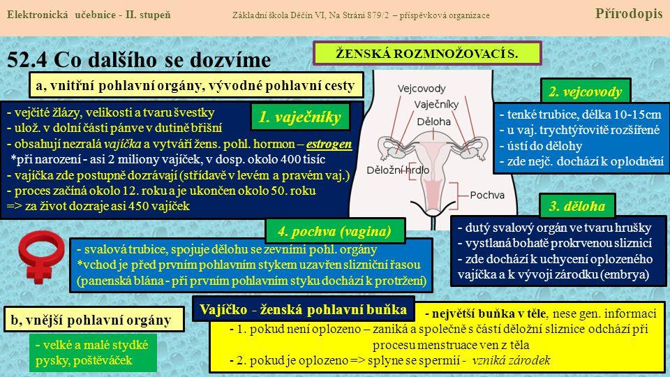 52.4 Co dalšího se dozvíme Elektronická učebnice - II. stupeň Základní škola Děčín VI, Na Stráni 879/2 – příspěvková organizace Přírodopis a, vnitřní