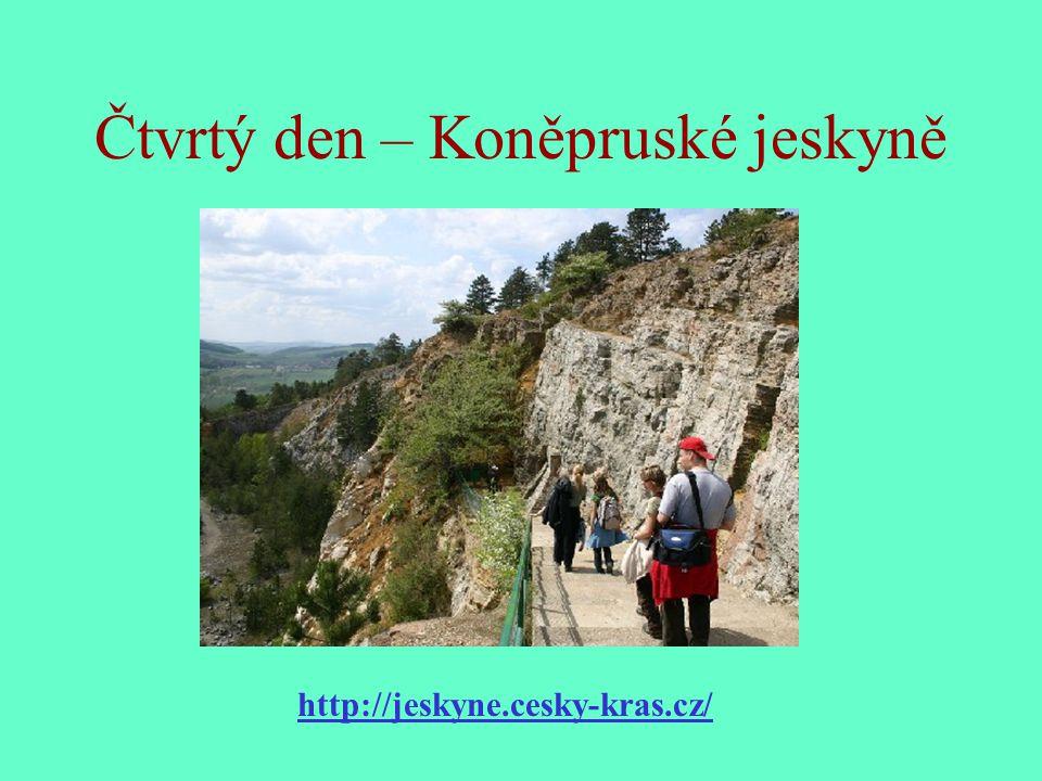 Čtvrtý den – Koněpruské jeskyně http://jeskyne.cesky-kras.cz/
