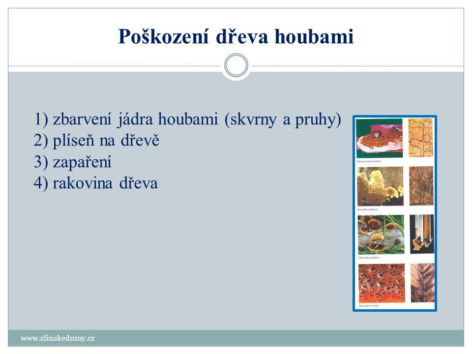 Poškození dřeva houbami www.zlinskedumy.cz 1) zbarvení jádra houbami (skvrny a pruhy) 2) plíseň na dřevě 3) zapaření 4) rakovina dřeva