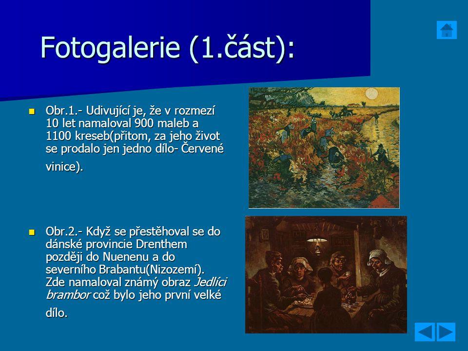 Fotogalerie (1.část): Obr.1.- Udivující je, že v rozmezí 10 let namaloval 900 maleb a 1100 kreseb(přitom, za jeho život se prodalo jen jedno dílo- Čer