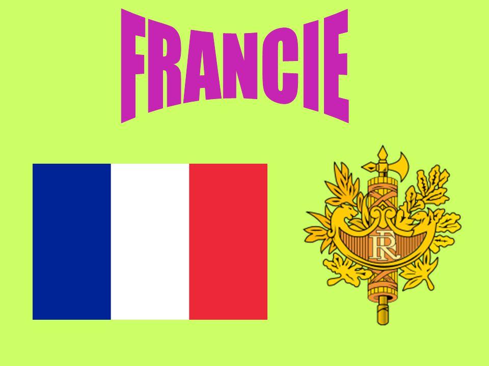 románský jazyk hovoří se s ní především ve Francii, Belgii, Švýcarsku, Kanadě a v mnoha zemích v Africe psána latinkou s diakritickými znaménky mezinárodní jazyk