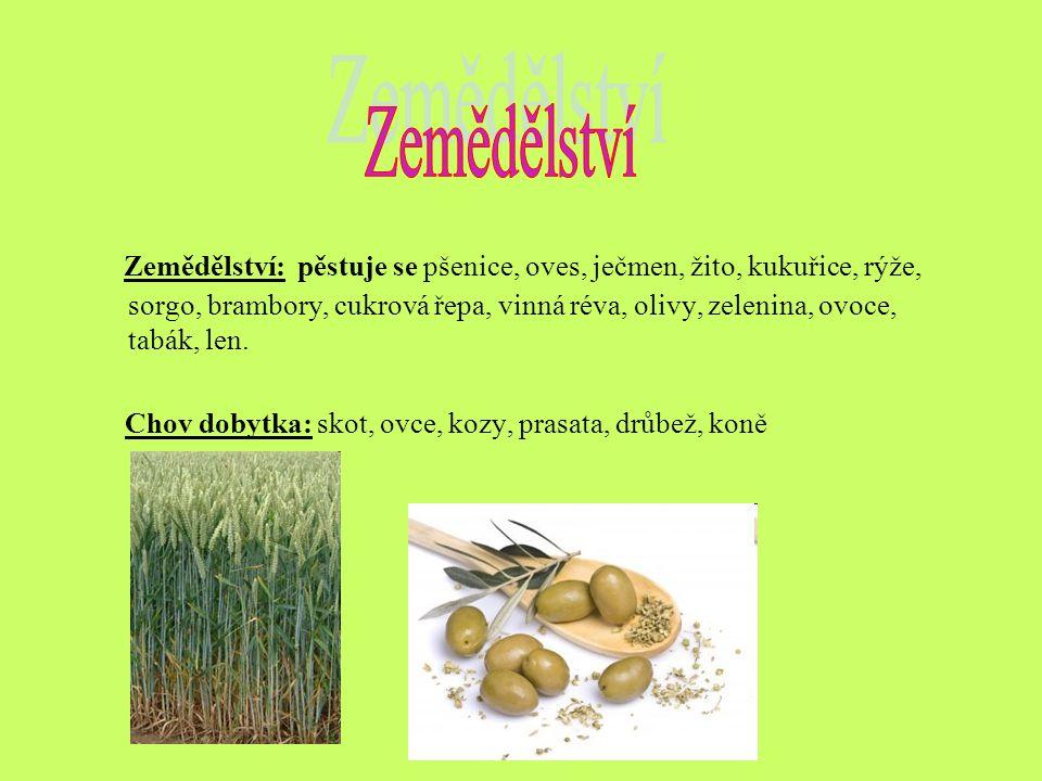 Zemědělství: pěstuje se pšenice, oves, ječmen, žito, kukuřice, rýže, sorgo, brambory, cukrová řepa, vinná réva, olivy, zelenina, ovoce, tabák, len.