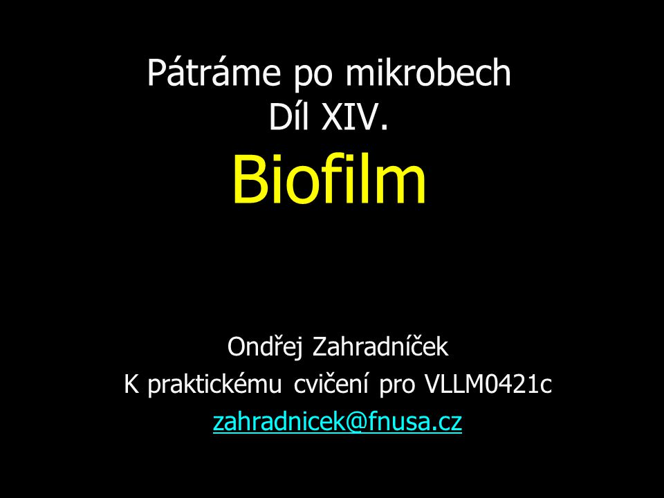 Biofilm a mikrobiologická diagnostika a) Průkaz biofilmu aa) fenotypovými metodami (Christensenova metoda, Kultivace na agaru s kongo červení) ab) genotypovými metodami b) Stanovení citlivosti bakterií v biofilmu k jednotlivým antibiotikům (MBEC) c) Zohlednění tvorby biofilmu při běžné bakteriologické diagnostice: např.