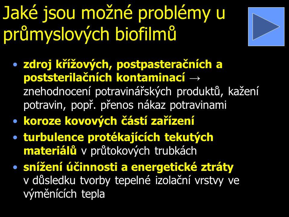 Jaké jsou možné problémy u průmyslových biofilmů zdroj křížových, postpasteračních a poststerilačních kontaminací → znehodnocení potravinářských produ
