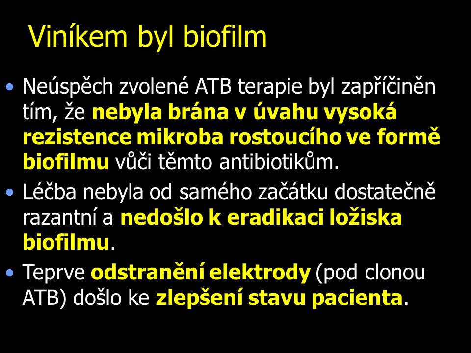 Viníkem byl biofilm Neúspěch zvolené ATB terapie byl zapříčiněn tím, že nebyla brána v úvahu vysoká rezistence mikroba rostoucího ve formě biofilmu vů