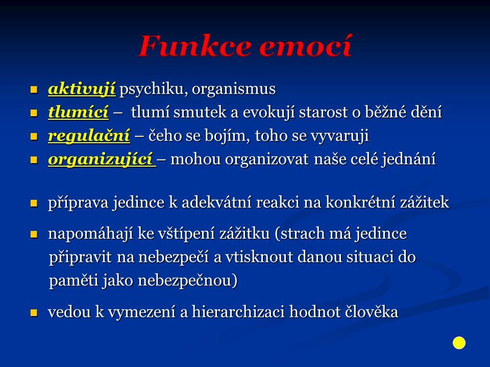 Zdroje a prameny Gillernová,I - Malotínová, M.: Psychologie pro střední školy, Praha, SPN 1992 Hyhlík, F.
