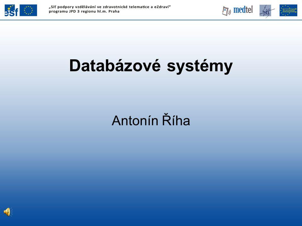 Databázové systémy Antonín Říha
