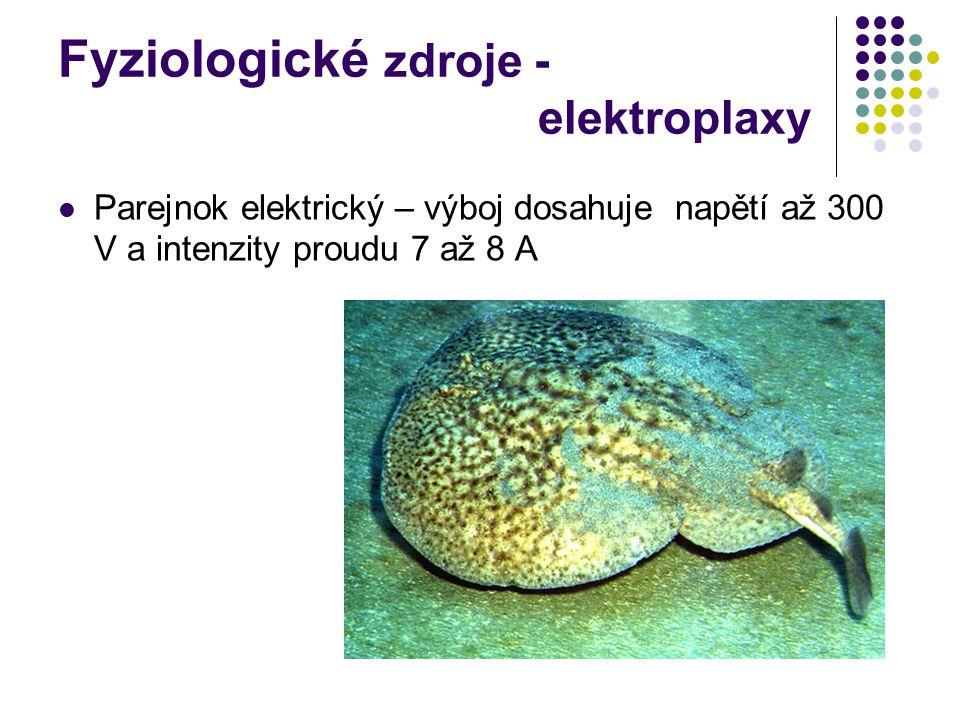 Fyziologické zdroje - elektroplaxy Parejnok elektrický – výboj dosahuje napětí až 300 V a intenzity proudu 7 až 8 A