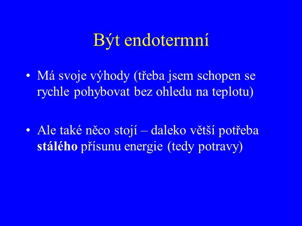 Být endotermní Má svoje výhody (třeba jsem schopen se rychle pohybovat bez ohledu na teplotu) Ale také něco stojí – daleko větší potřeba stálého přísu