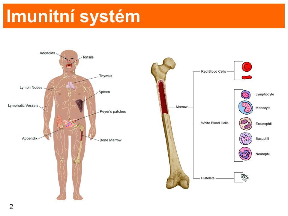 2 Imunitní systém