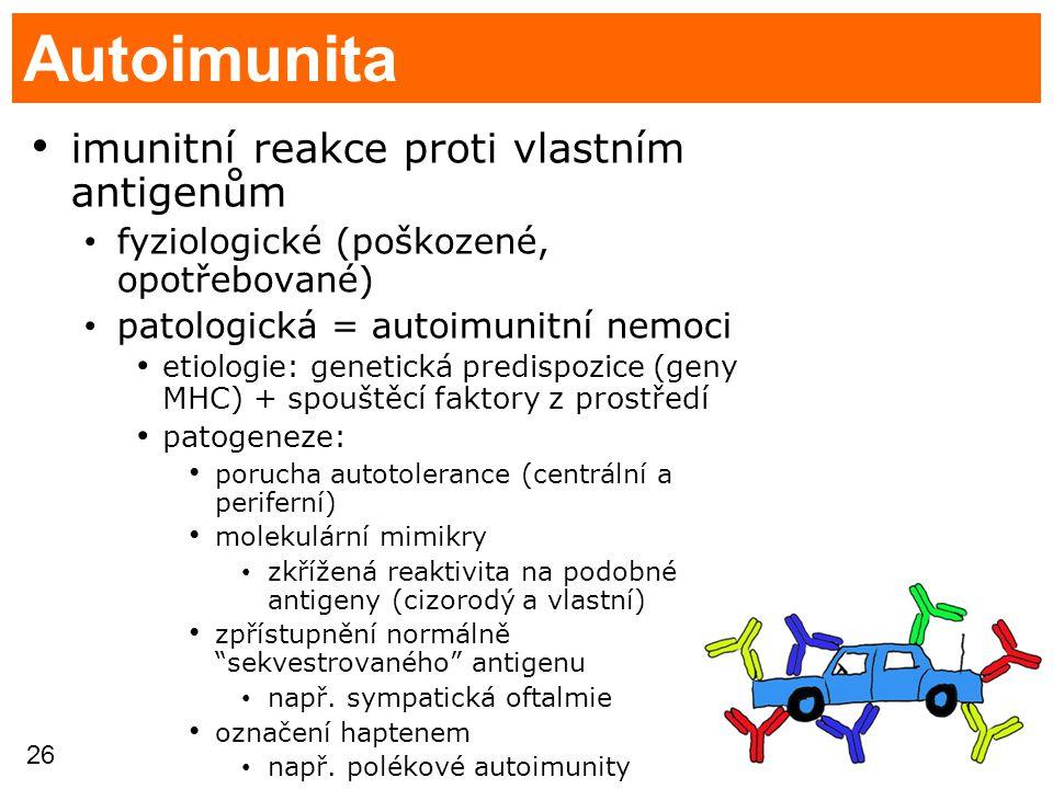 26 Autoimunita imunitní reakce proti vlastním antigenům fyziologické (poškozené, opotřebované) patologická = autoimunitní nemoci etiologie: genetická