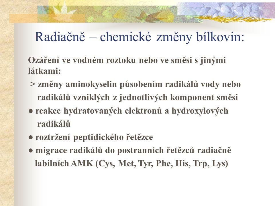 Radiačně – chemické změny bílkovin: Ozáření ve vodném roztoku nebo ve směsi s jinými látkami: > změny aminokyselin působením radikálů vody nebo radiká