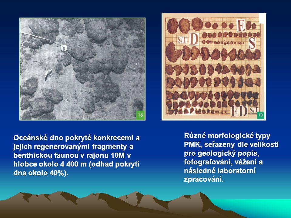 Oceánské dno pokryté konkrecemi a jejich regenerovanými fragmenty a benthickou faunou v rajonu 10M v hlobce okolo 4 400 m (odhad pokrytí dna okolo 40%