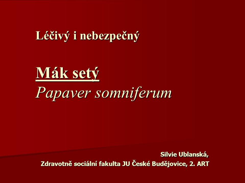 Léčivý i nebezpečný Mák setý Papaver somniferum Silvie Ublanská, Zdravotně sociální fakulta JU České Budějovice, 2. ART