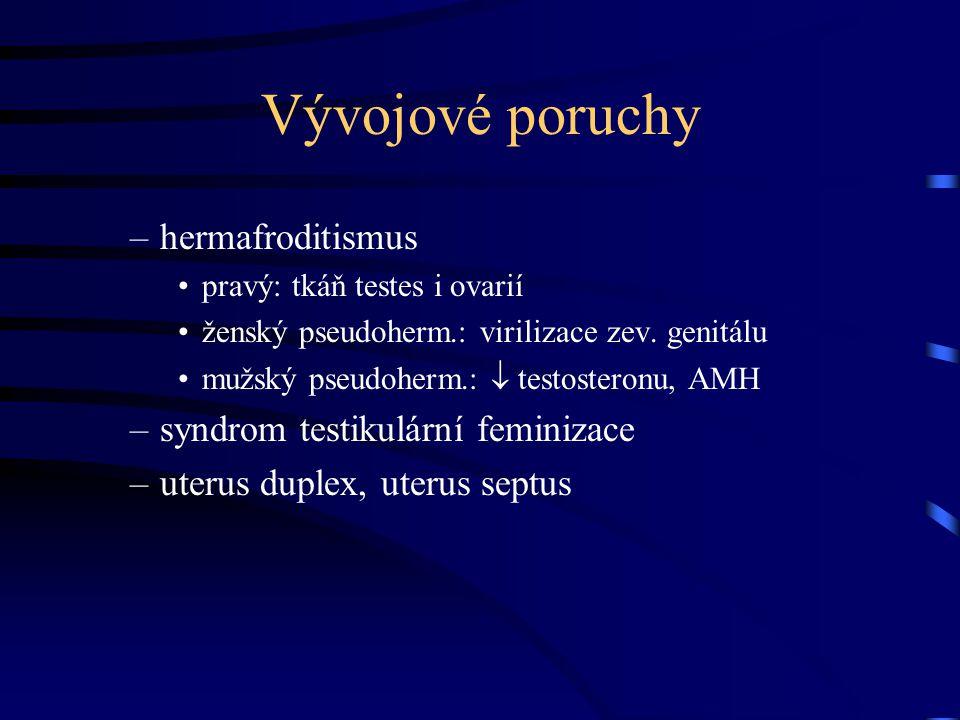 Vývojové poruchy –hermafroditismus pravý: tkáň testes i ovarií ženský pseudoherm.: virilizace zev. genitálu mužský pseudoherm.:  testosteronu, AMH –s