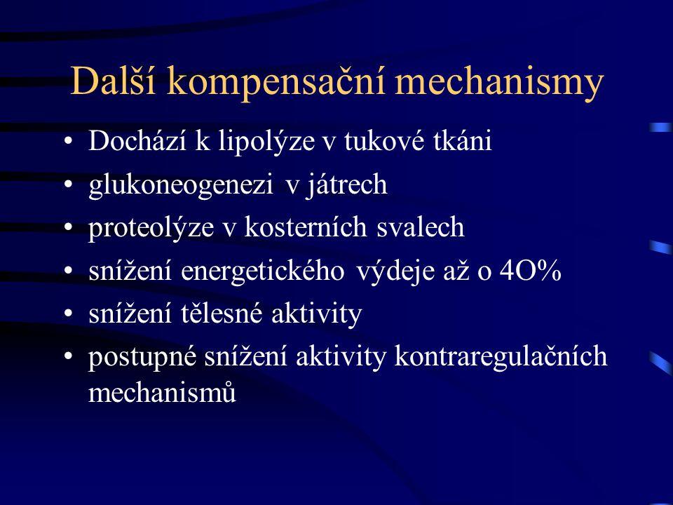 Další kompensační mechanismy Dochází k lipolýze v tukové tkáni glukoneogenezi v játrech proteolýze v kosterních svalech snížení energetického výdeje až o 4O% snížení tělesné aktivity postupné snížení aktivity kontraregulačních mechanismů