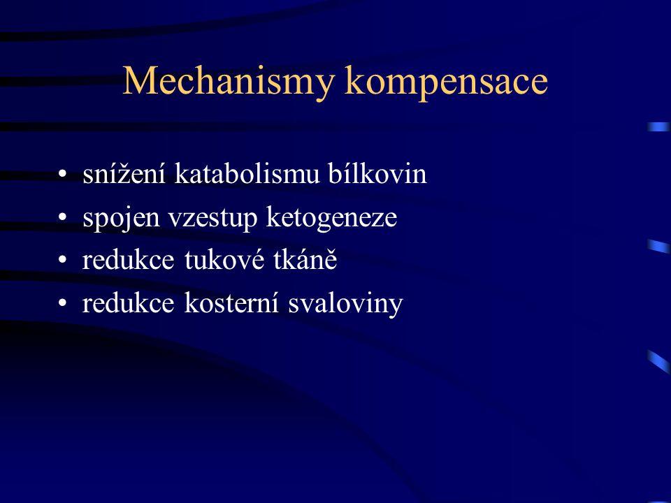 Mechanismy kompensace snížení katabolismu bílkovin spojen vzestup ketogeneze redukce tukové tkáně redukce kosterní svaloviny