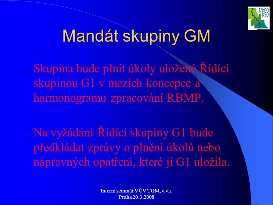 Interní seminář VÚV TGM, v.v.i. Praha 20.3.2008 Mandát skupiny GM – Skupina bude plnit úkoly uložené Řídící skupinou G1 v mezích koncepce a harmonogra