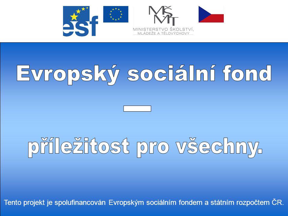 Tento projekt je spolufinancován Evropským sociálním fondem a státním rozpočtem ČR.