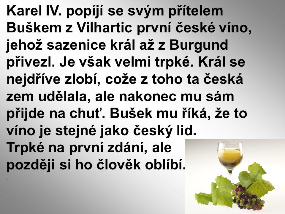 Karel IV. popíjí se svým přítelem Buškem z Vilhartic první české víno, jehož sazenice král až z Burgund přivezl. Je však velmi trpké. Král se nejdříve