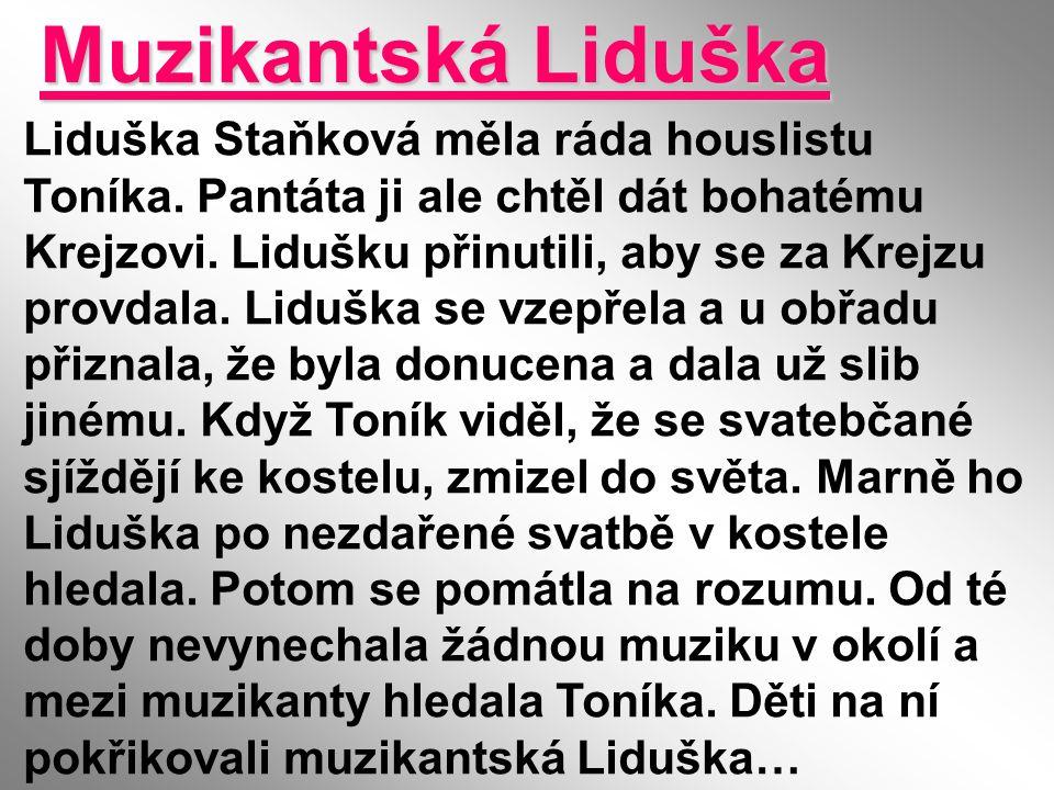 Muzikantská Liduška Liduška Staňková měla ráda houslistu Toníka. Pantáta ji ale chtěl dát bohatému Krejzovi. Lidušku přinutili, aby se za Krejzu provd
