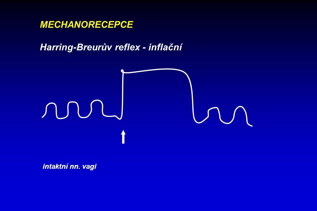 MECHANORECEPCE Harring-Breurův reflex - inflační oboustranná vagotomie