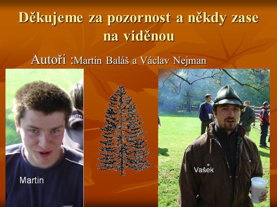 Děkujeme za pozornost a někdy zase na viděnou Autoři : Martin Baláš a Václav Nejman