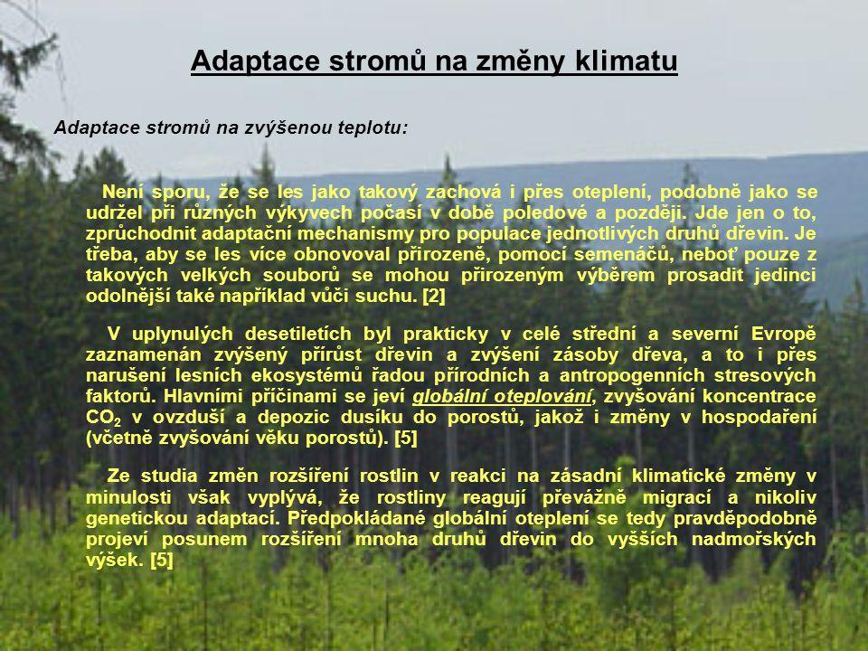 Adaptace stromů na změny klimatu Adaptace stromů na zvýšenou teplotu: Není sporu, že se les jako takový zachová i přes oteplení, podobně jako se udrže