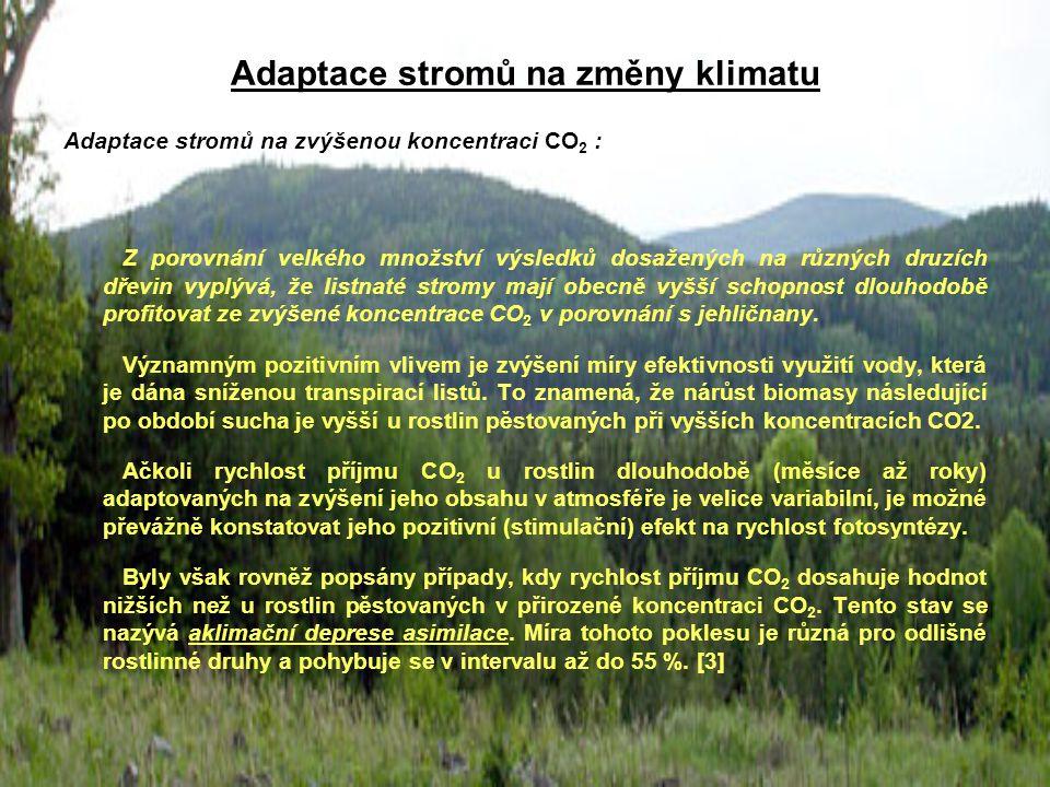 Adaptace stromů na změny klimatu Adaptace stromů na zvýšenou koncentraci CO 2 : Z porovnání velkého množství výsledků dosažených na různých druzích dř