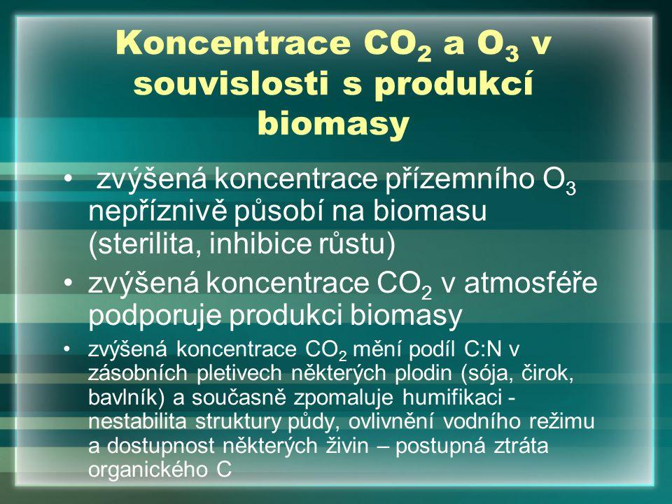 Koncentrace CO 2 a O 3 v souvislosti s produkcí biomasy zvýšená koncentrace přízemního O 3 nepříznivě působí na biomasu (sterilita, inhibice růstu) zv