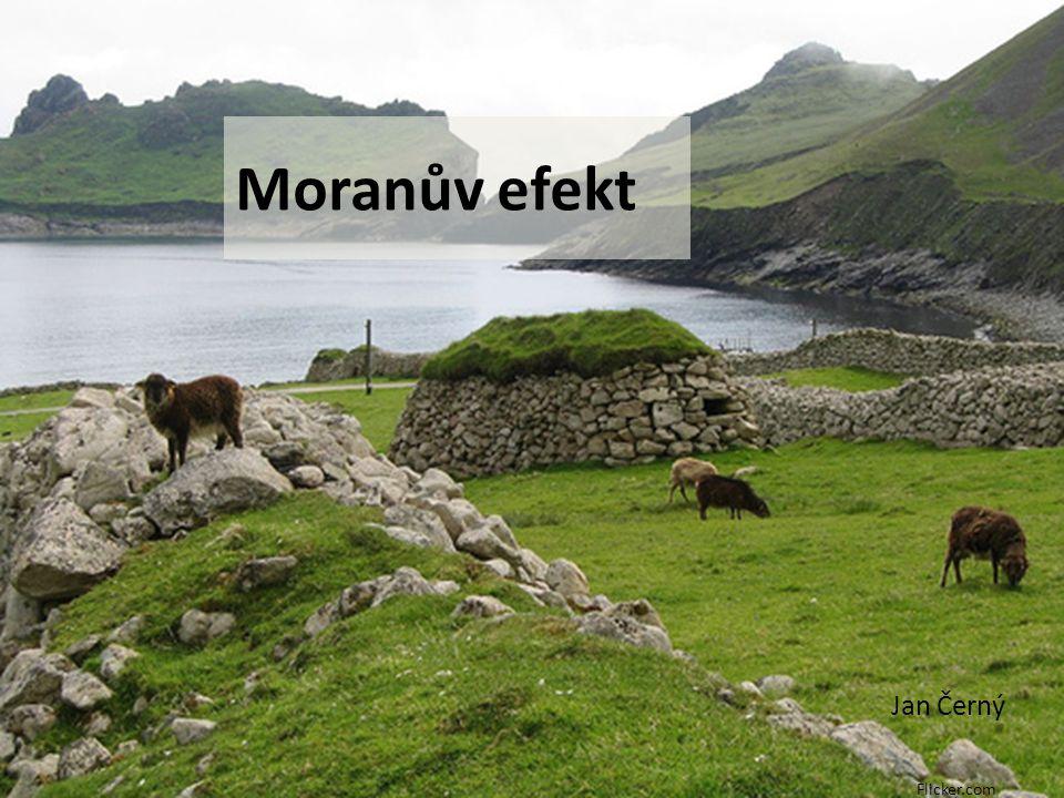 Moranův efekt Jan Černý Flicker.com