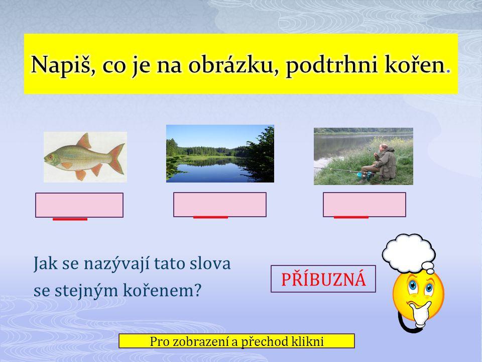 ryba rybník rybář Jak se nazývají tato slova se stejným kořenem.