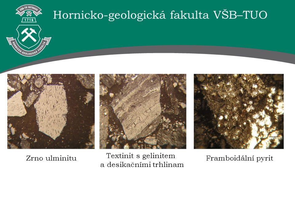 Hornicko-geologická fakulta VŠB–TUO Zrno ulminitu Textinit s gelinitem a desikačními trhlinam Framboidální pyrit