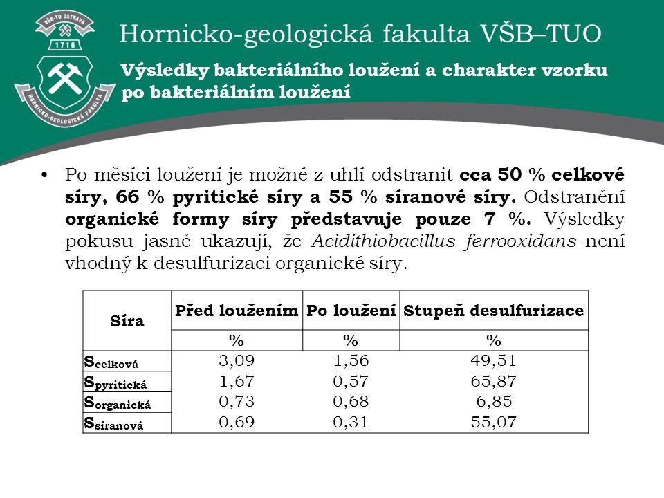 Hornicko-geologická fakulta VŠB–TUO Výsledky bakteriálního loužení a charakter vzorku po bakteriálním loužení Po měsíci loužení je možné z uhlí odstra