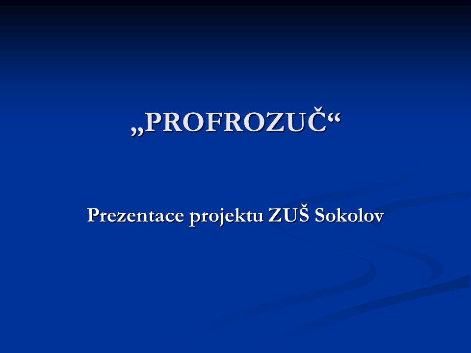 """PROFROZUČ Prezentace projektu ZUŠ Sokolov"