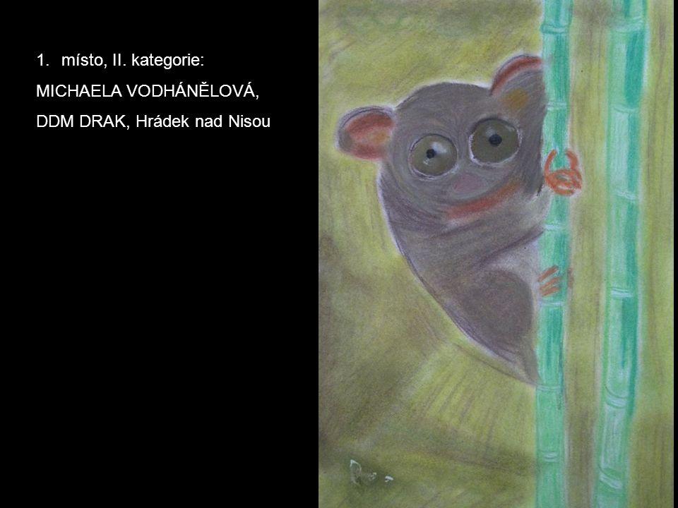1.místo, II. kategorie: MICHAELA VODHÁNĚLOVÁ, DDM DRAK, Hrádek nad Nisou