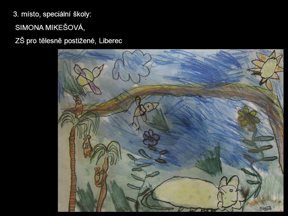 3. místo, speciální školy: SIMONA MIKEŠOVÁ, ZŠ pro tělesně postižené, Liberec